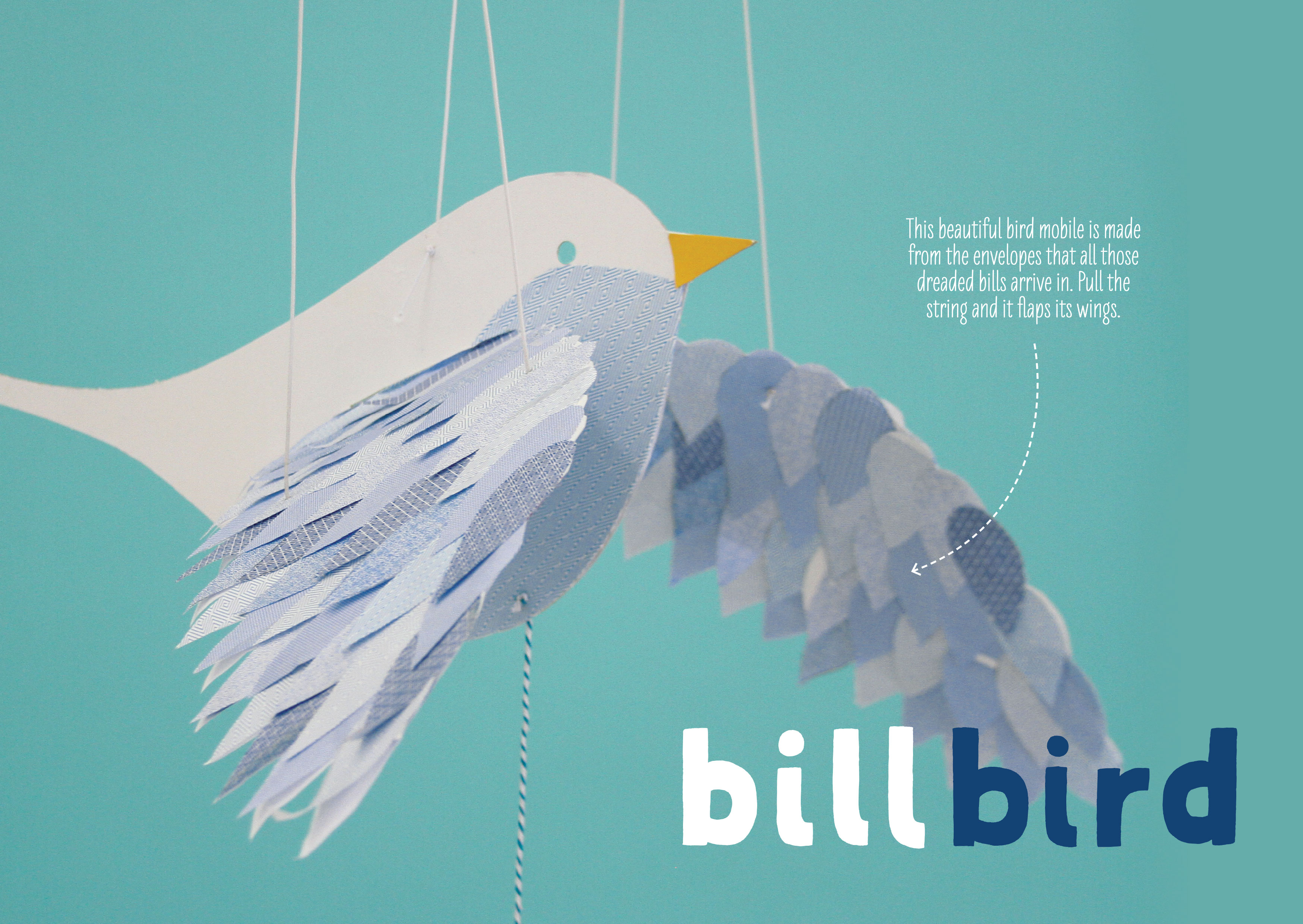 Lotta-bill-bird-1